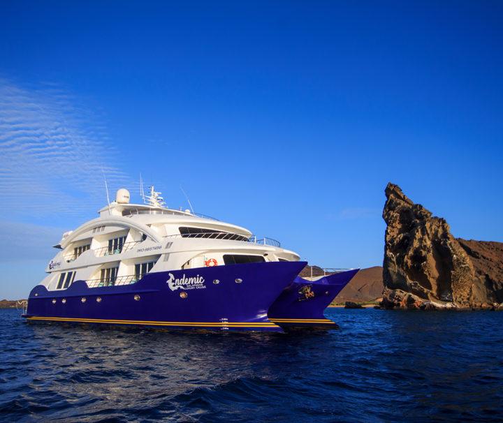 Endemic Galapagos