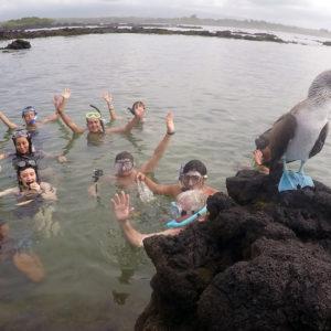 #Galapagos #Islands