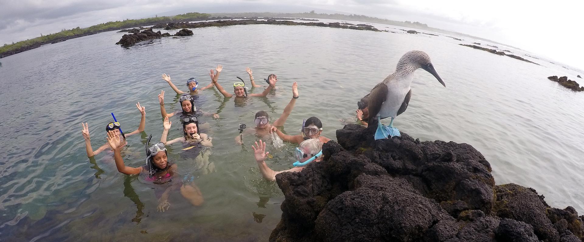 Galapagos Island Snorkel