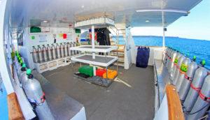 Aqua Diving Platform