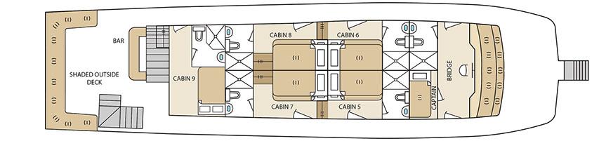 Upper Deck Aqua