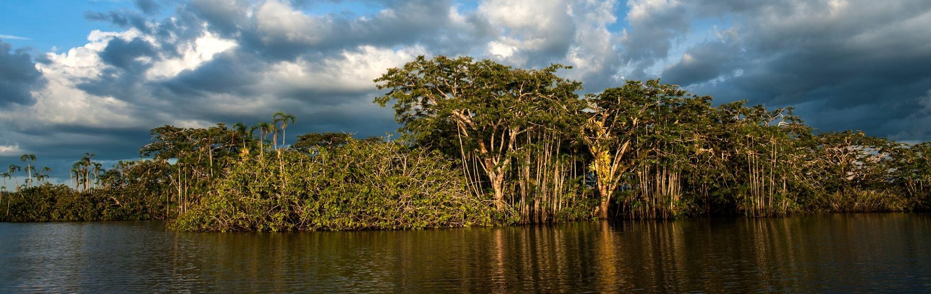 Cuyabeno Amazon Jungle Tour
