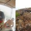 Los Tuneles - Cabo Rosa