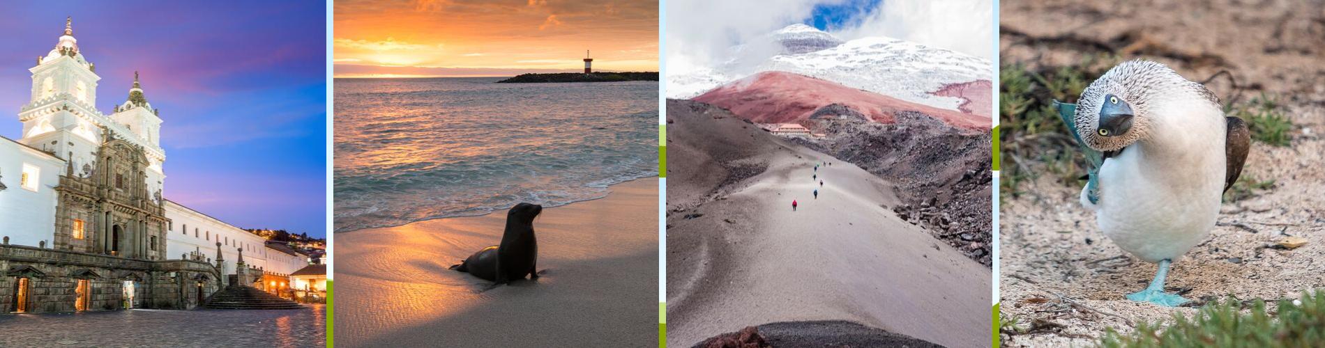 Galapagos & Andes Trek Adventure