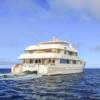 Treasure of Galapagos