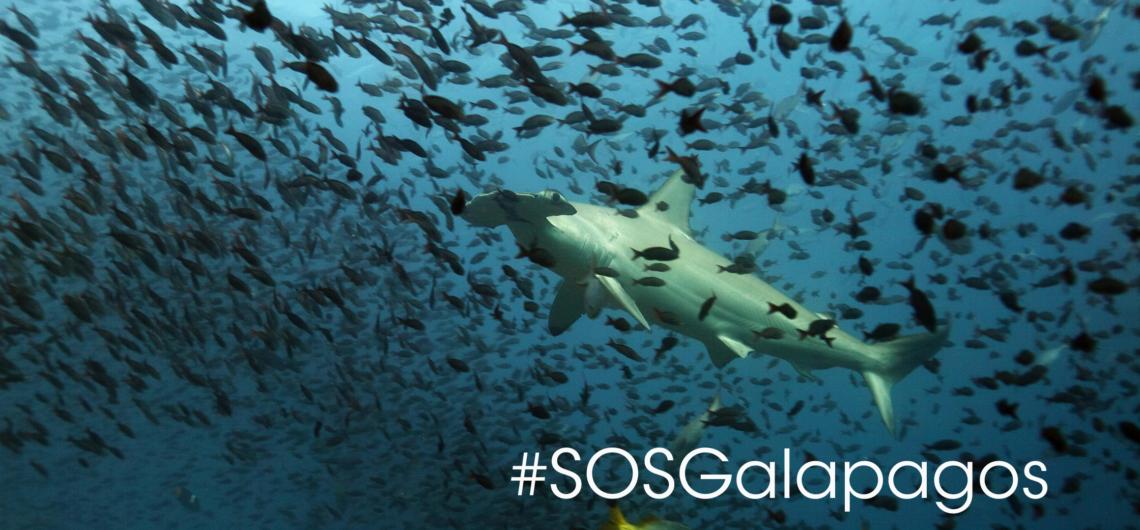 SOS Galapagos